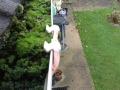 Gutter Repair Chelmsford